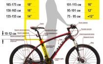 Выбор размера велосипедных колёс по росту