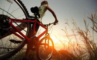 Сколько калорий сжигает езда на велосипеде