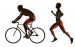 Польза и вред от бега и езды на велосипеде