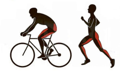 Картинки по запросу Польза и вред от бега и езды на велосипеде